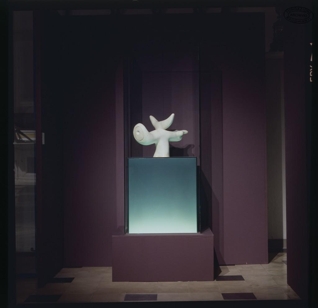 progetto museo henaux crediti giovanni battista romboni (3)