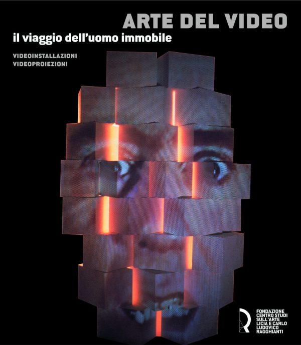 Arte del video. Il viaggio dell'uomo immobile